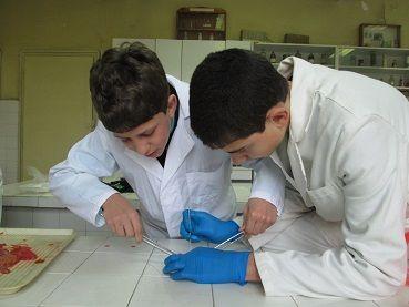 Ветеринарен техник 2