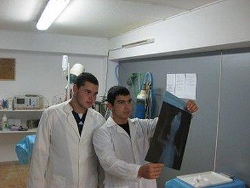Ветеринарен техник 4