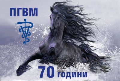70 години НПГВМ 1